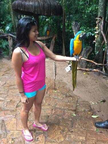 Me and other new friend, the macaw.